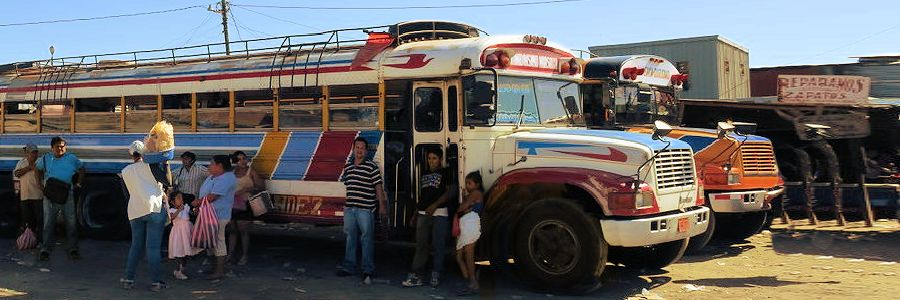 2_chicken_bus