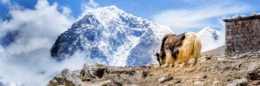 Everest Base Camp Trek: Wandern zur Mutter aller Basislager